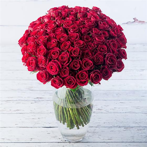 Magnificent 100 Red Roses